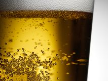 Closeup of freshly poured glass of beer with frothy head and bubbles. Closeup freshly poured glass of gold amber beer with frothy head and carbonation bubbles Stock Images