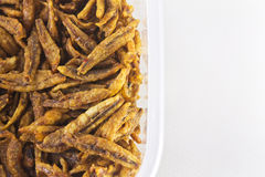 Closeup of Fried anchovies, asian food Stock Image
