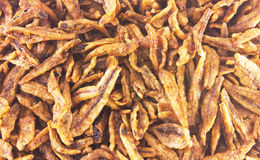 Closeup of Fried anchovies, asian food Stock Images