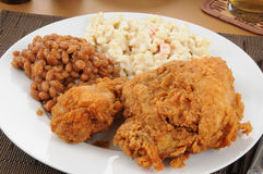 Closeup of a fried chicken dinner Royalty Free Stock Photography