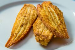 Closeup of fried dover sole fish fillets stock photo