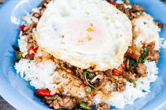 Closeup fried egg of rice stir fried pork Stock Image