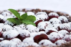 Closeup of frosted cherry pudding Royalty Free Stock Images