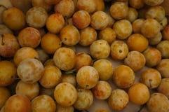 Closeup on fruit Stock Images