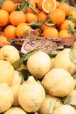 Closeup,fruits,oranges,lemons Royalty Free Stock Photo