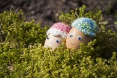 Closeup of funny eggs with chicken face for Easter decoration. Closeup of funny Easter eggs with cute face in mosses for decoration in spring sunlight Royalty Free Stock Images