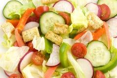Closeup Garden Salad royalty free stock photos