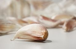 Closeup of a garlic clove. Closeup of a garlic clove with multiple other cloves out of focus in the background royalty free stock photo