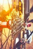 Closeup gear mountain bike wheel detail and disc brake. Royalty Free Stock Image