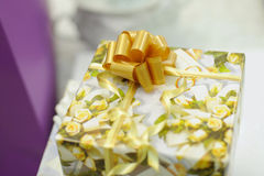 Gift Box with Knot Stock Photography