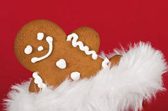 Closeup of gingerbread man cookie Royalty Free Stock Photos
