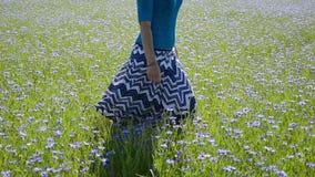 Closeup girl bluet field Stock Image
