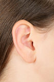 Closeup of a girl ear. Closeup of a brunette girl ear stock photo