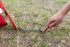 Closeup of girl hands placement of red camping tent, macro shot of peg and grass. Stock Photography