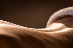 Closeup of girl`s back before massage royalty free stock photography