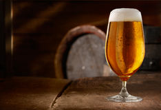 Closeup of a glass of fresh foamy beer. On a table in a vintage beer cellar Royalty Free Stock Photography