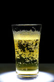 Closeup of a glass of fresh foamy beer Royalty Free Stock Image