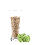 Closeup of glass with grains and hop. Stock Photo