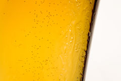 Closeup of glass of light beer Stock Images