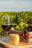 Closeup of glass of red wine in front of a vineyard Royalty Free Stock Photo
