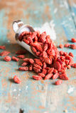 Closeup of goji berries Royalty Free Stock Image