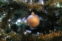 Closeup of gold ornament on tree Stock Image