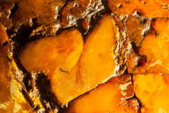 Closeup of golden amber as background or texture. Resin gem. Royalty Free Stock Images