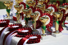 Closeup of golden trophies and ribbons for equestrian winners Stock Photo
