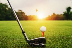 Free Closeup Golf Club And Golf Ball On Green Grass Wiht Sunset Stock Image - 147502101