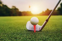 Closeup golf club and golf ball on green grass wiht sunset. Course sport golfing leisure activity putting hitting lifestyle outdoor play game training stock image