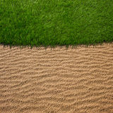 Closeup golf green grass field Royalty Free Stock Images