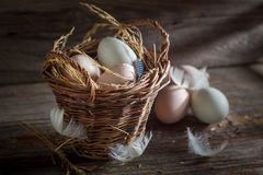 Good and ecological eggs in the basket Stock Photography