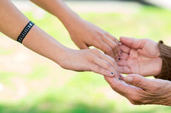 Closeup grandmother granddaughter holding hands Royalty Free Stock Photo