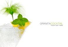 Closeup Granita Cocktail in Martini Glass. Template Design Stock Images