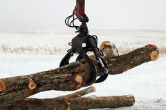 Close up of grappling hook moving logs royalty free stock image