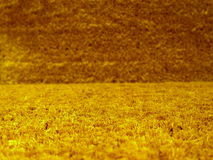Closeup of grass rug  Stock Image