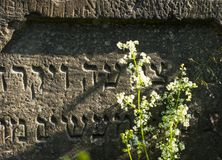 Gravestone in the old Jewish cemetery in the Ukrainian Carpathia royalty free stock photography