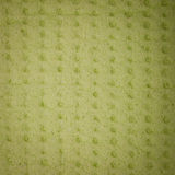 Closeup green brown sponge background texture pattern Stock Photography