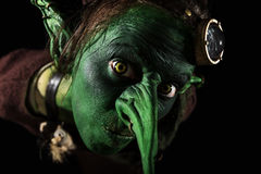 Closeup, green female goblin with a long nose and freaky ears Stock Images