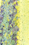 Closeup of Green Flaking Paint Stock Images