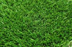 Green grass. A closeup of green grass Stock Photos