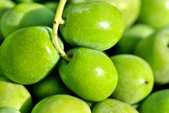 Closeup of green olives. Royalty Free Stock Image