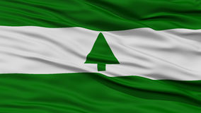 Closeup of Greenbelt City Flag Stock Photography