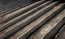 Closeup of grey stairs Royalty Free Stock Photography