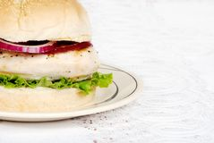 Closeup grilled chicken burger Royalty Free Stock Images