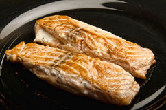 Closeup of Grilled Salmon Fillet Royalty Free Stock Images