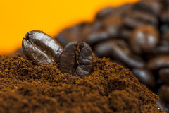 Closeup of ground coffee and beans Royalty Free Stock Photography
