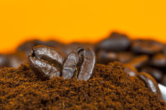 Closeup of ground coffee and beans Stock Image