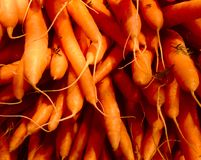 Group of carrots stock images