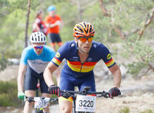 Closeup of group of mountain bike cyclists in the forest Stock Image